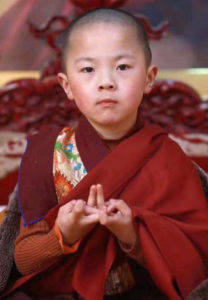 HH the Fourth Pema Norbu Rinpoche